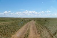 Through the steppe